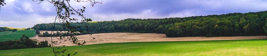 Natur Landschadt
